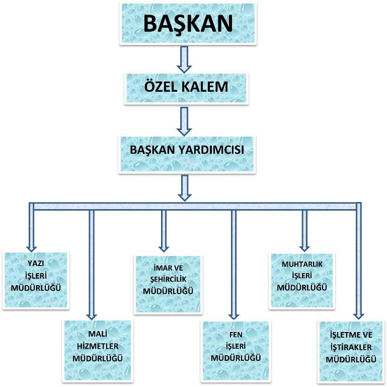 İDARİ_ŞEMA.jpg